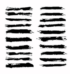 brush strokes template vector image vector image