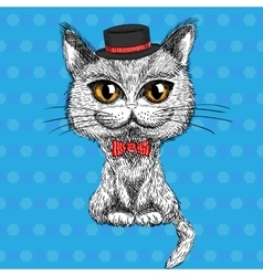 closeup portrait of the British cat hipster vector image vector image