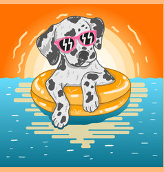 Dog swim on summer vector