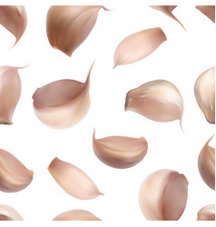 realistic garlic isolated vector image
