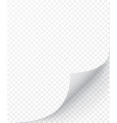 sheet paper with curled corner and soft shadow vector image