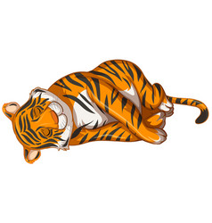 Tiger sleeping on white background vector