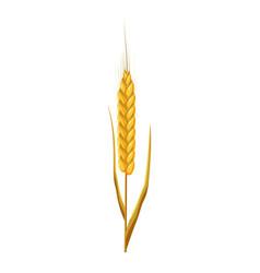 wheat ear icon cartoon style vector image vector image