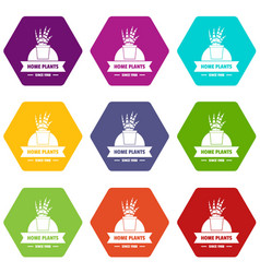 exotic cactus icons set 9 vector image