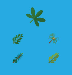 flat icon natural set of leaves rosemary maple vector image