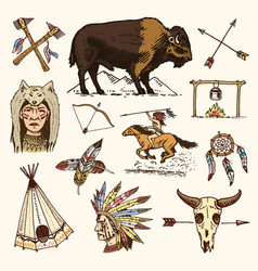 Indian or native american buffalo axes and tent vector