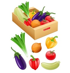 Organic vegetables fresh vector image