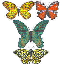 Set of colored hand-drawn butterflies vector