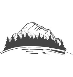 sketch a mountains with fir forest engraving vector image