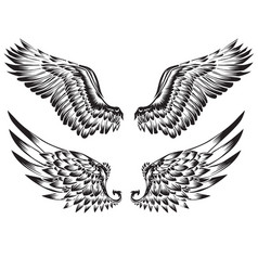 Wings bird black white tattoo vector