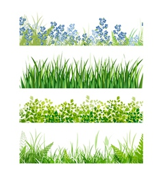 green grass floral banner collection vector image
