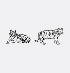 tiger emblem set vector image vector image