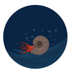 Ammonite in under or color vector