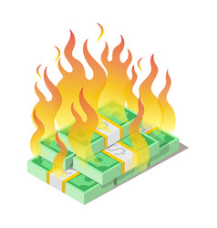 burning pile american dollars banknotes money vector image