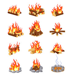 cartoon bonfire summer campfires flame with vector image