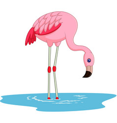 cartoon flamingo vector image