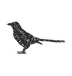Magpie bird spiral pattern color silhouette animal vector