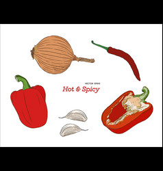 hand drawn sketch style peppers set vector image vector image