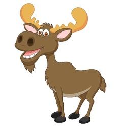 Moose cartoon vector image