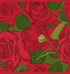 Beautiful red rose seamless pattern botanical vector