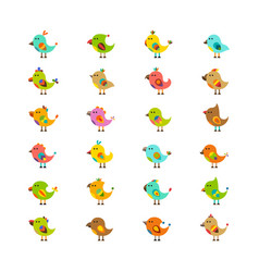 cute birds isolated on white set in flat style vector image
