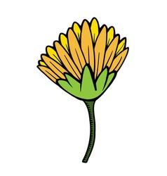 flower 209 11 vector image