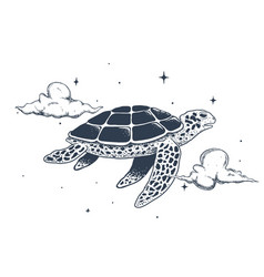 flying turtle in sky vector image