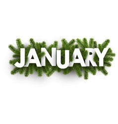 January banner with fir branches vector