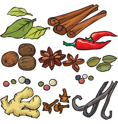 Spices icon set vector