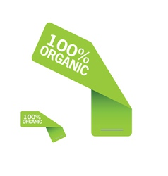 sticker organic green vector image
