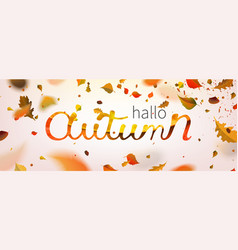 stock hallo autumn falling vector image