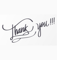 Thank you lettering for decorative card vector