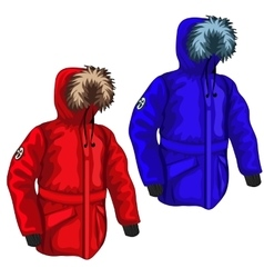 Warm down jacket for winter in different colors vector