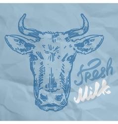 head of the cow sketch vector image