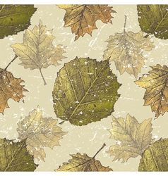 hazel leaves seamless vector image vector image