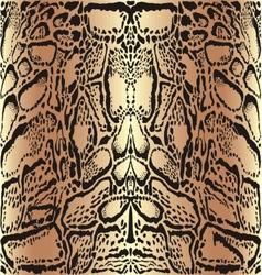 Background skins clouded leopard vector image