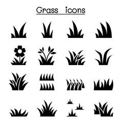 grass icon set graphic design vector image vector image