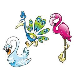 Peacock swan and flamingo vector image