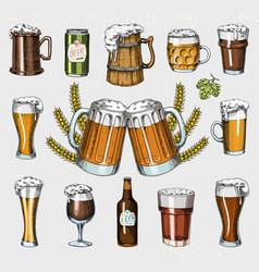 Beer glass mug or bottle oktoberfest engraved vector