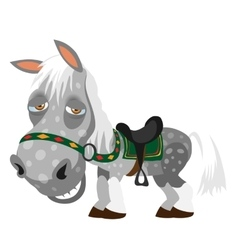 Gray spotted tired horse animal cartoon style vector image