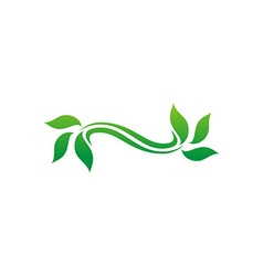 leaf logo design vector image