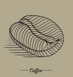 Vintage coffee bean vector image