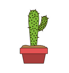 white background with cactus with big branch in vector image vector image