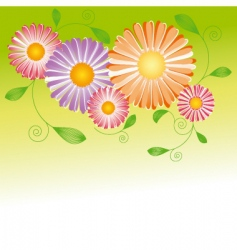 springtime flower vector image vector image