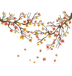 maples tree falling background vector image vector image