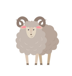 Sheep flat isolated on white vector