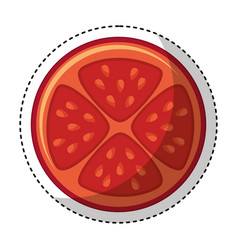 Vegetable pizza ingredient icon vector