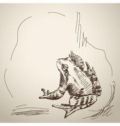 Sketch of frog vector image
