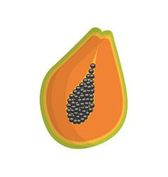 slice papaya fruit healthy vector image vector image