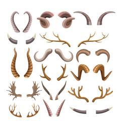 Branchy and sharp horns of wild animals set vector